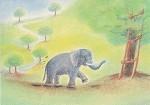 Carvalho, G. Elefant. KK