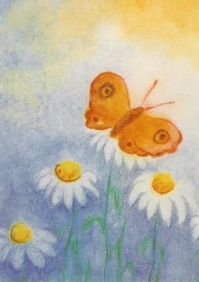 Scholzen-Gnad. Schmetterling. KK