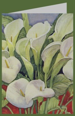 Delevoryas, L. Arum Lilies, 1978. DK