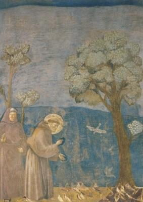 Giotto di Bondone. Franziskus predigt den Vögeln. KK