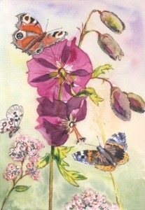 Anne C. Wenzel. Malve und Schmetterlinge