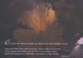 Steffens-Knutzen. Es weht der Wind ein Blatt .... Foto-DK
