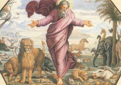 Raffael. Gott schuf alle Arten von Lebewesen nach .... KK