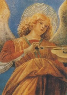 Forli, M. Engel mit Geige. KK