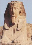 Aegy.Sphinx, aus der Sphinxallee zwischen Luxor u. Karnak.KK