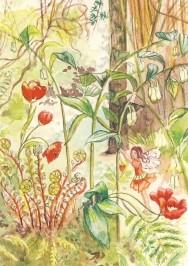 Anne C. Wenzel. Elfenwald