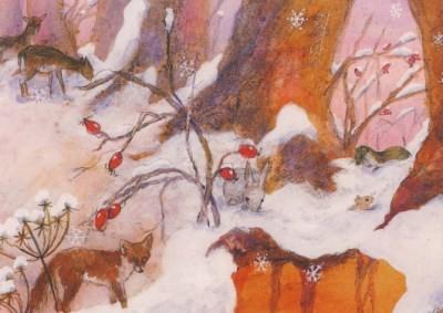 Daniela Drescher. Fuchs im Schnee. KK