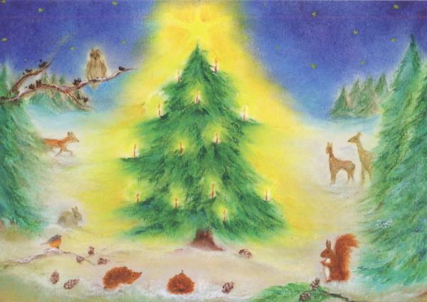 Baukje Exler. Weihnachten im Wald