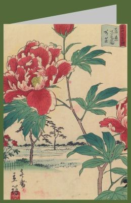 Utagawa Hiroshige II. Pfingstrosen, 1866