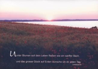 Steffens-Knutzen. Unter Blumen soll dein Leben.... Foto-DK