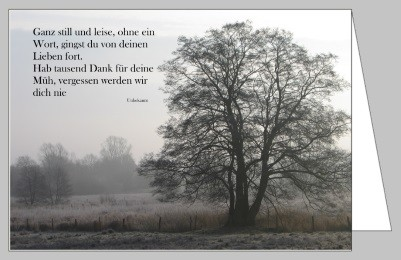 Steffens-Knutzen. Ganz still und leise. Foto-DK