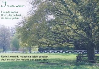 Steffens-Knutzen. Im alter werden Freunde selten. Foto-DK