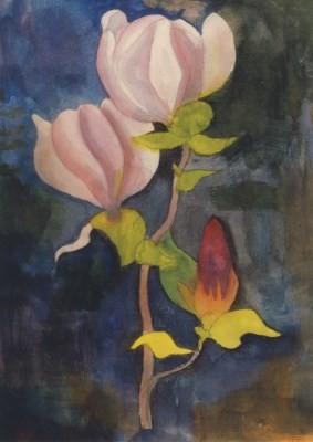 Hermann Hesse. Magnolienblüte, Mai 1928