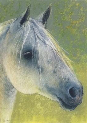 Loes Botman. Pferdekopf, 2014 Pastell