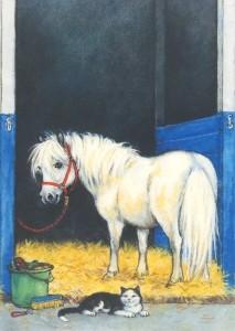 Nordqvist, M. Pony im Stall