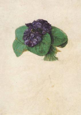 Dürer, A. Veilchensträußchen, Dürer