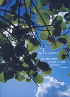 Steffens-Knutzen. Ich wünsche dir, dass deine .... Foto-DK