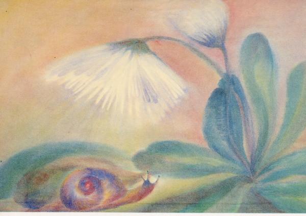 Ursula Reich. Das Gänseblümchen und die Schnecke