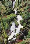 Warwick, Foto: Mike. Wasserfall. DK