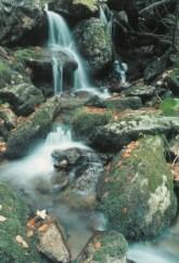 Essler, Markus. Wasserfall. Foto KK