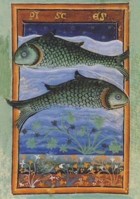 Liber Astrologiae, 14. Jh. Fische. KK