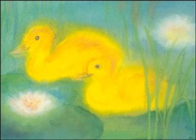 Dorothea Schmidt. Zwei Enten im Teich. KK