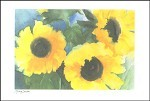 Decker, Marion. Sonnenblumen. DK