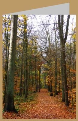Steffens-Knutzen. Herbst