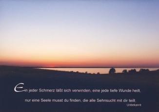 Steffens-Knutzen. Ein jeder Schmerz läßt sich .... Foto-DK