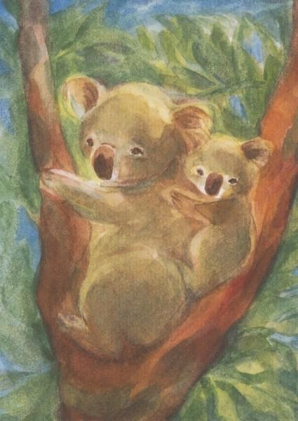 Viriot. Koalabären. KK