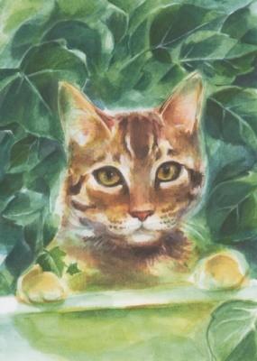 Viriot. Katze. KK